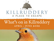Killruddery Summer Events Poster
